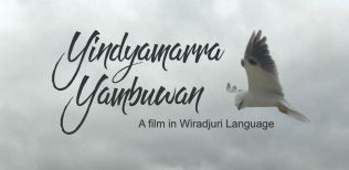 Yindyamarra Yambuwan promo image web